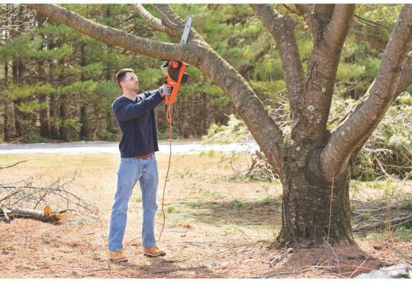 Best Lightweight Chainsaws